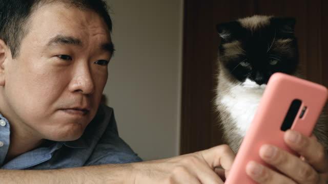 自宅の猫と技術 - 30代点の映像素材/bロール