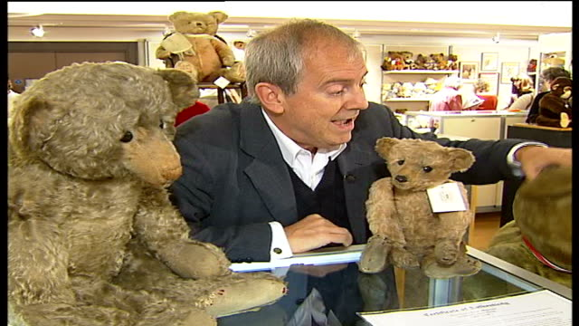 teddy bear auction at christie's; gyles brandreth looking through auction catalogue teddy bears on display in cabinet face of teddy bear gyles... - display cabinet stock videos & royalty-free footage
