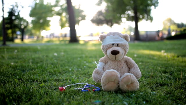 teddy bear patient sitting in the park - medical dressing stock videos & royalty-free footage