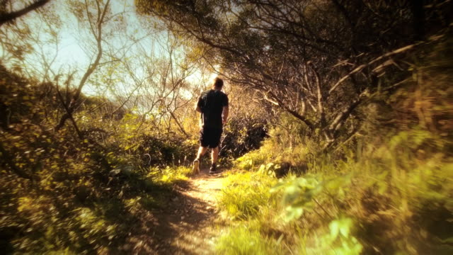 Teen boy jogging down forest trail