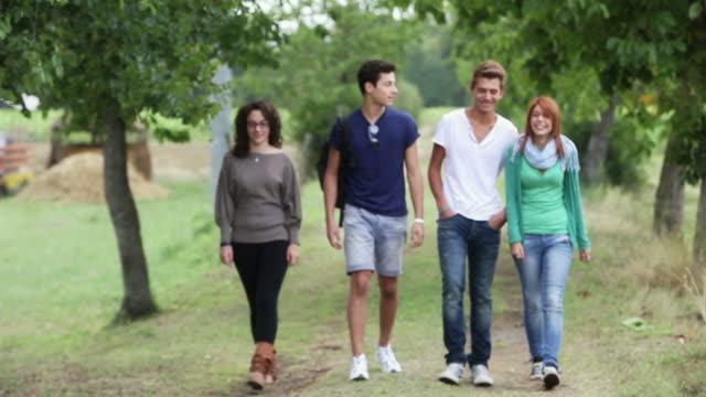 vídeos y material grabado en eventos de stock de teen amigos caminando al aire libre - hierba familia de la hierba