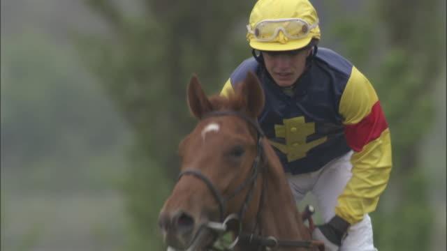 slo mo ms teen jockey on horseback running at newbury racecourse / newbury, england, uk - newbury england stock videos & royalty-free footage