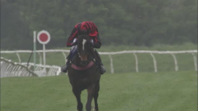 slo mo ws teen jockey on horseback running at newbury racecourse / newbury, england, uk - newbury england stock videos & royalty-free footage