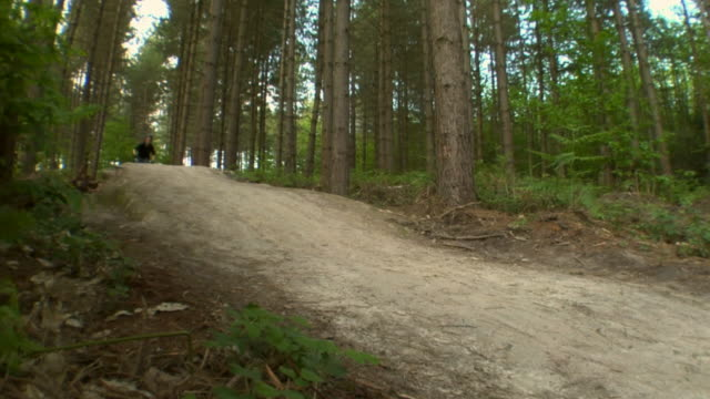 slo mo la ws teenage boy cycling and jumping over hill in bedgebury forest / kent, england, uk - see other clips from this shoot 1036 stock videos and b-roll footage