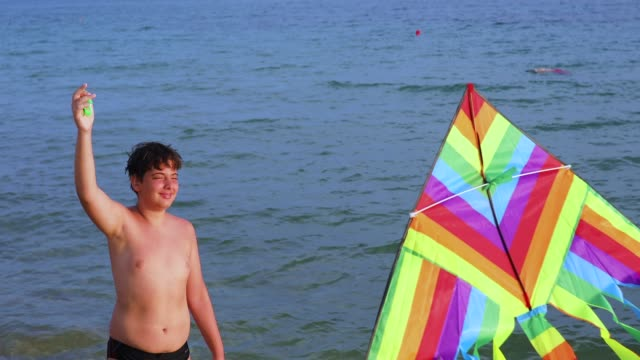 teenage boy flying kite on beach - kid with kite stock videos & royalty-free footage