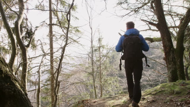 4K Teenage boy hiking, enjoying view in forest, real time