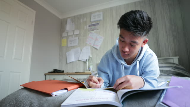 teenage boy revising at home - teenage boys stock videos & royalty-free footage