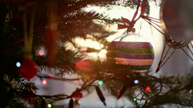 teenage boy undressing christmas tree. close up - santa hat stock videos and b-roll footage