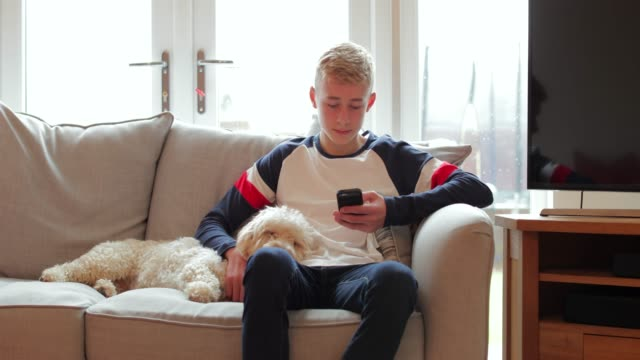 teenage boy uses phone - teenagers only stock videos & royalty-free footage