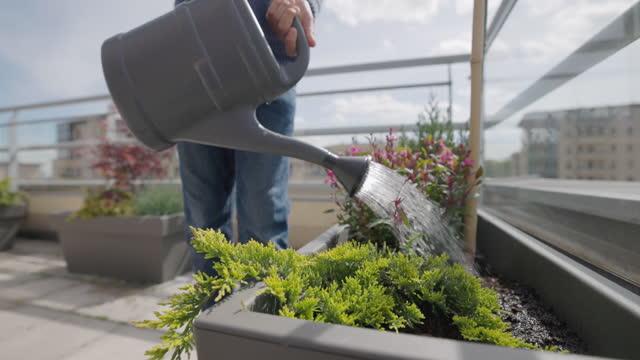 バルコニーで花を散水する10代の少年 - 水撒き点の映像素材/bロール