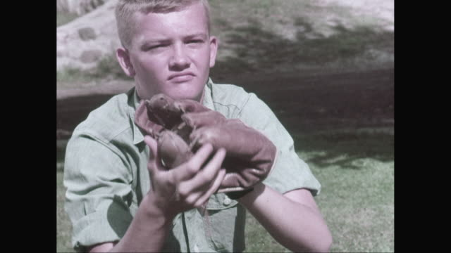 stockvideo's en b-roll-footage met ms teenage boy wearing baseball glove, catching and throwing baseball ball / united states - alleen één tienerjongen