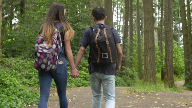 teenage couple walking in a forest while holding hands - teenagers only stock videos and b-roll footage