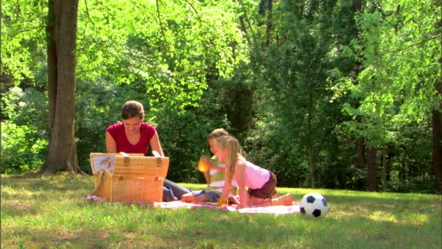 teenage girl and children picnicking - see other clips from this shoot 1428 stock videos & royalty-free footage