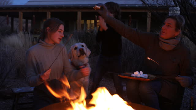 teenage girl and her family enjoying an outdoor firepit - new mexico stock videos & royalty-free footage