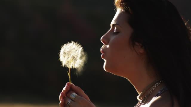 CU Teenage girl (16-17) blowing dandelion standing in field / South Fork, Utah, USA