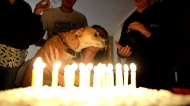 Teenage girl blowing out birthday candles with her dog