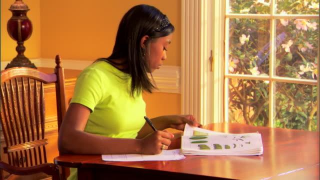 teenage girl doing homework - one teenage girl only stock videos & royalty-free footage