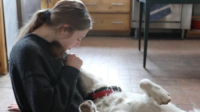 vídeos de stock e filmes b-roll de teenage girl holding her dog - só meninas adolescentes