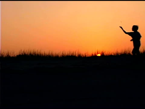 teenage girl on beach at sunset - one teenage girl only stock-videos und b-roll-filmmaterial