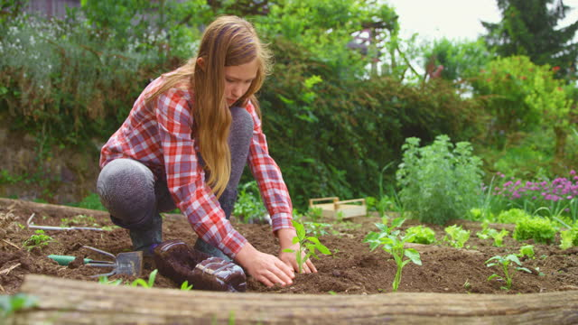 庭に植えるslo moティーンエイジの女の子 - one teenage girl only点の映像素材/bロール