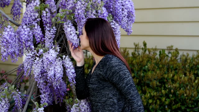 teenage girl smells flowers - hay fever stock videos and b-roll footage