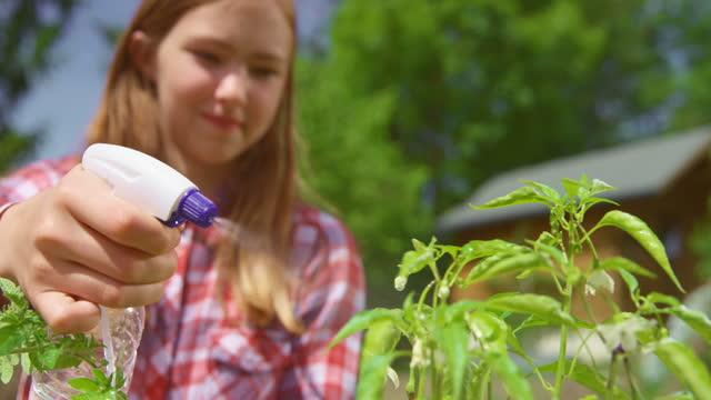 slo moティーンエイジガールは庭の外に植物植物をスプレー - one teenage girl only点の映像素材/bロール