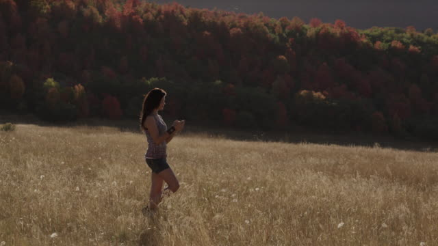 ws pan teenage girl (16-17) text messaging while walking through field of grass / south fork, utah, usa - one teenage girl only stock videos & royalty-free footage