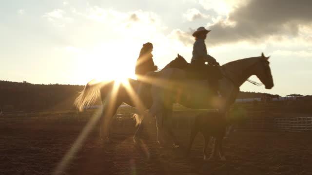 teenage girl training horse paddock sunset farm - wild west stock videos & royalty-free footage