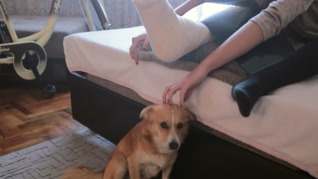 teenage girl with broken leg cuddling her dog at home - leg stock videos & royalty-free footage