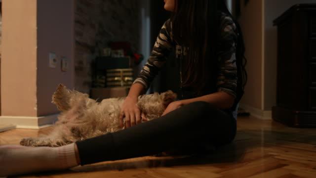 vidéos et rushes de adolescente avec chien mignon - propriétaire d'animal de compagnie