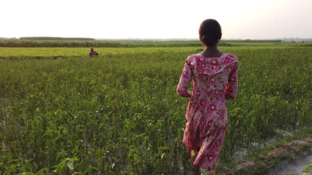 teenage girl works in a crop-land. during rainy season their houses are eroded by flood and they shift to another places. - one teenage girl only点の映像素材/bロール
