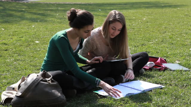 vídeos de stock e filmes b-roll de teenage girls work on homework in park, using digital tablet - estudar