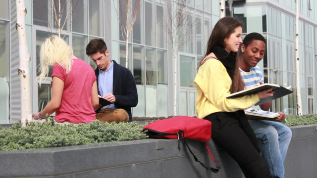 Teenage students studying outside