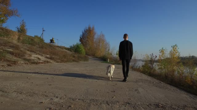teenager boy walking with his dog - riverbank stock videos & royalty-free footage