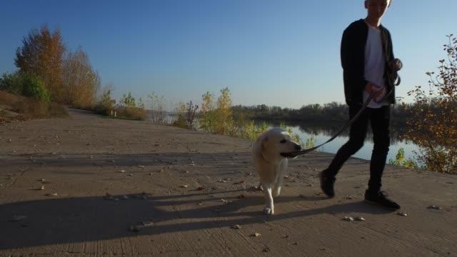 vídeos de stock e filmes b-roll de teenager boy walking with his dog - meninos adolescentes