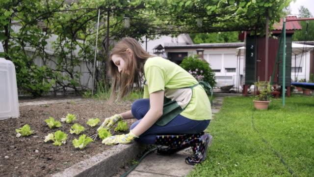 teenager girl enjoying in vegetable garden - sunny stock videos & royalty-free footage