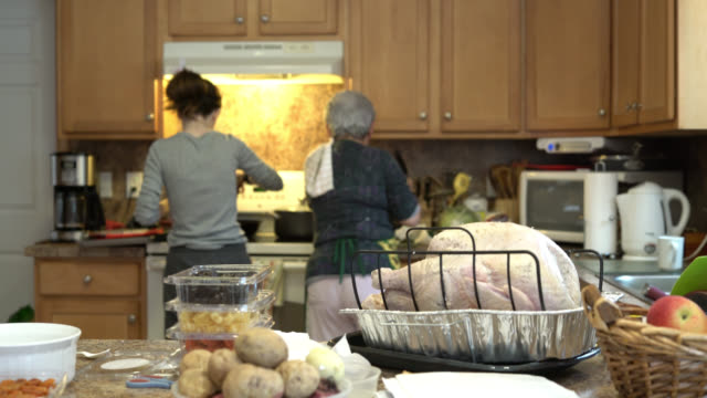 teenager girl, granddaughter, and her grandmother, silver-haired senior woman, stuffing the turkey for a holiday dinner - 65 69 years stock videos & royalty-free footage