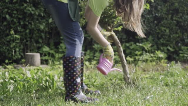 teenager girl watering bonsai tree - watering stock videos & royalty-free footage