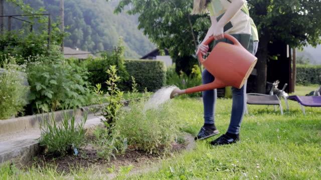 teenager girl watering plant in garden - watering stock videos & royalty-free footage