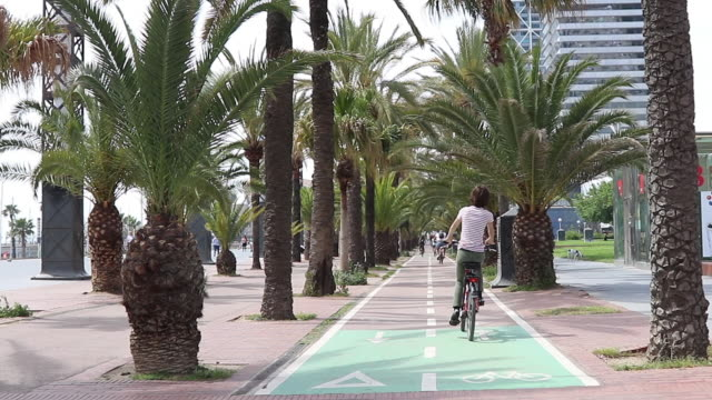 teenager is cycling in barcelona - one teenage boy only stock videos and b-roll footage