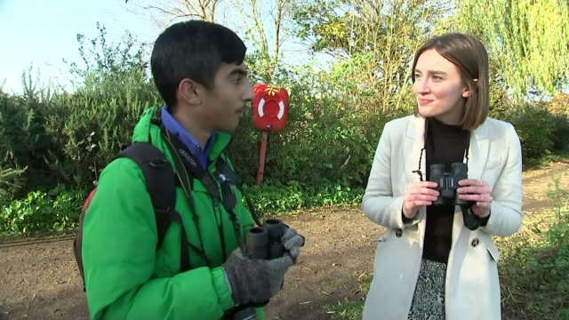 teenager kabir kaul on birdwatching in london's green spaces uk england london walthamstow wetlands kabir kaul interview and various shots of wetland... - bird watching stock videos & royalty-free footage