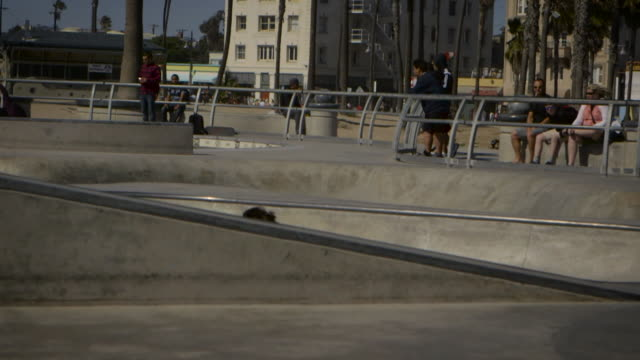 teenager skating in pool at venice california skatepark - un ragazzo adolescente video stock e b–roll
