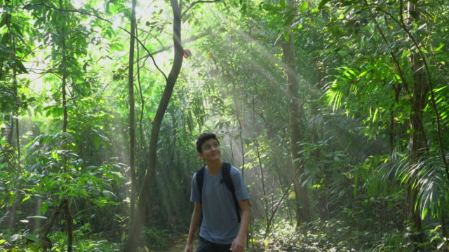 WS Teenager walking through a rainforest