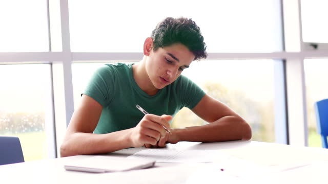 teenager working hard at school - adolescenza video stock e b–roll