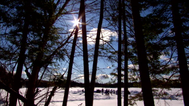 teenagers playing hockey on frozen rural pond in snow covered field sun w/ good rays by tree winter team sports game play amateurs friends - field hockey stock videos and b-roll footage