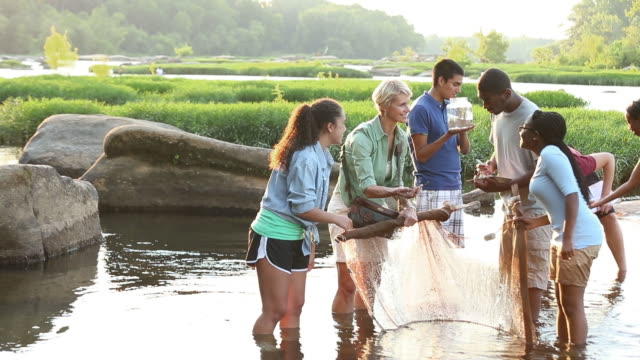 teens with ecology teacher learning environmental conservation on a river - biologist stock videos & royalty-free footage