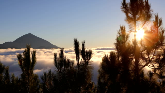 teide mountain and sea cloud - chipeque's sightseeing - milky way stock videos & royalty-free footage