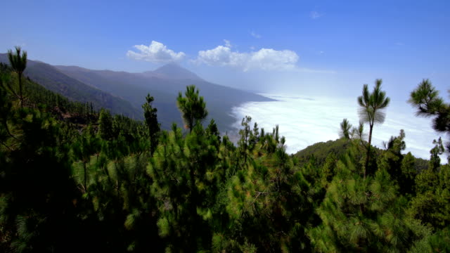 teide mountain and sea cloud - chipeque's sightseeing - midday stock videos & royalty-free footage