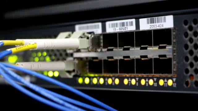 電気通信データ交換機器の揺らめく - ハシボソキツツキ点の映像素材/bロール