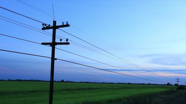 Telegraph poles fibre optic cable. sunset landscape.